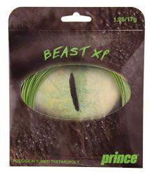 Prince Beast XP teniszhúr